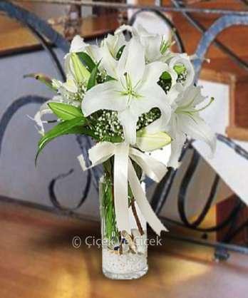 Beyaz Lilyumun Büyüsü